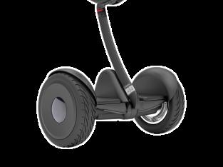 Segway Xiaomi Ninebot S