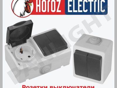 Prize si intrerupatoare aplicate in Moldova, Horoz