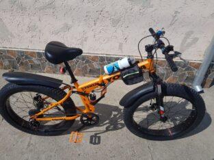 bicicleta grasa
