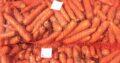 Morcovi proaspeți