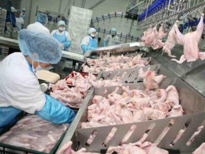 Uzina de prelucrare carne și produse semifabricate