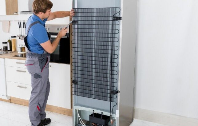 Muncitori la dezmembrarea frigiderelor. GERMANIA