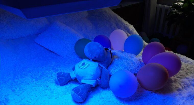 Лечения желтухи новорожденных Аренда лампы Philips