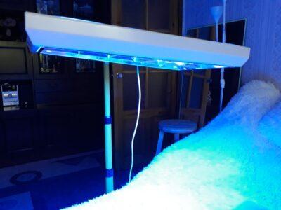 Tratament neonatal icter închiriere lampă Philips
