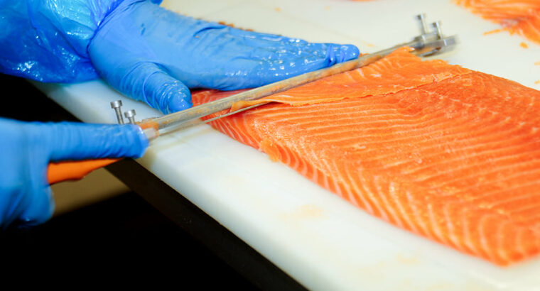 Fără COMISION! Lucru la fabrica de pește!
