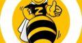 Zoom Express — credit rapid doar cu buletinul