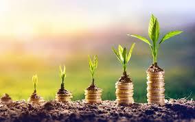 поиск бизнес-проекта для инвестиций