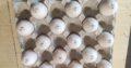 Ouă de curcan clocite marcate